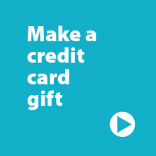 "Blue make a gift button that reads ""Make a credit card gift"""