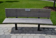 A bench adorned with a memorial plaque in the Garden of Hope at UF Health.