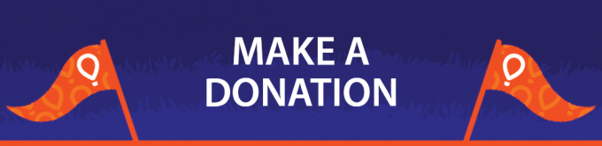 "Blue horizontal button that reads ""Make a Donation"""