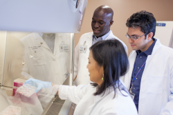 Preston A. Wells, Jr. Center for Brain Tumor Therapy at the University of Florida researchers Duane Mitchell, M.D., Ph.D., Catherine Flores, Ph.D., and Elias Sayour, M.D., Ph.D.